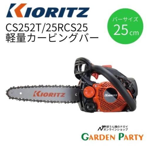 CS252T/25RCS25